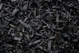 Black mulch from South Florida hardwood trees