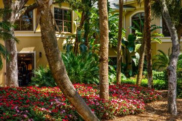 This planter bed in front of Stonebridge Country Club is filled with red and pink vinca flowers, along with mature palm trees and palmettos.